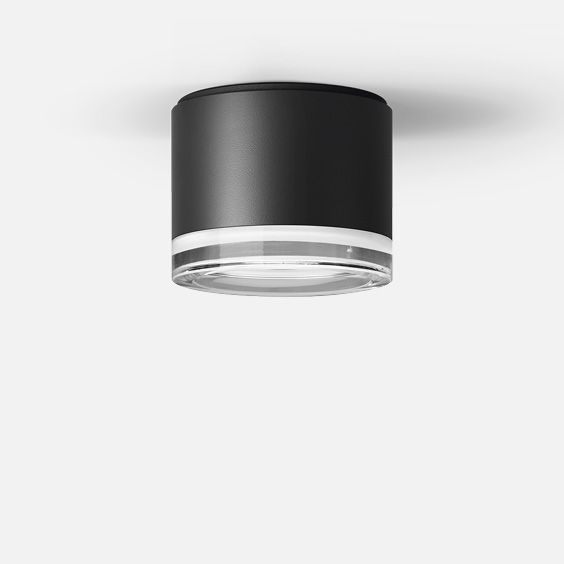 Surface mounted downlight